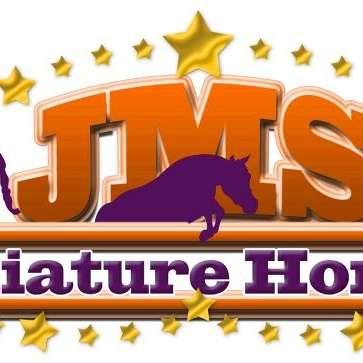 JMS Miniature Horses