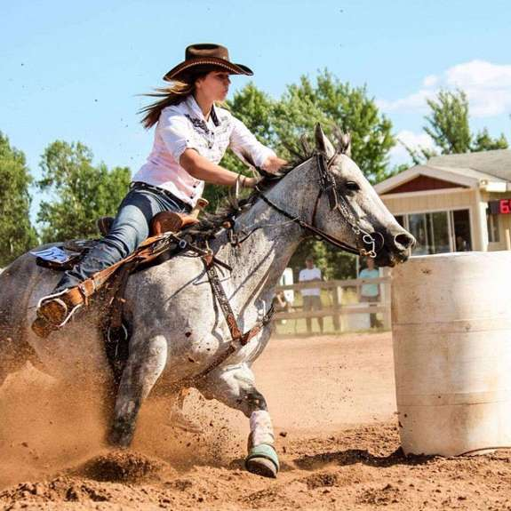 Barrel Racing Horses