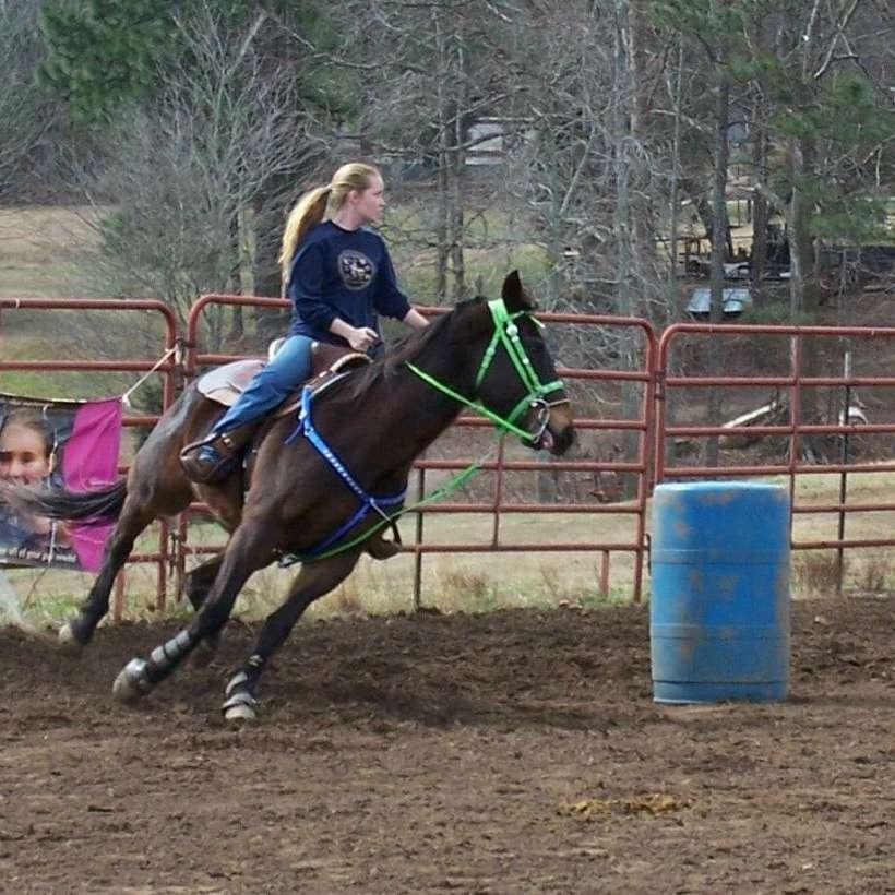 Brandiwyne Performance Horses