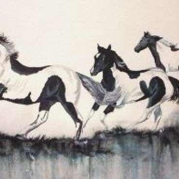 Kidz Horses World Class Barrel Horses
