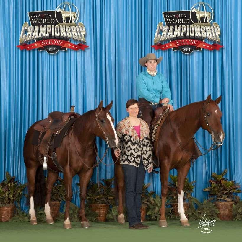 Cheetham Performance Horses
