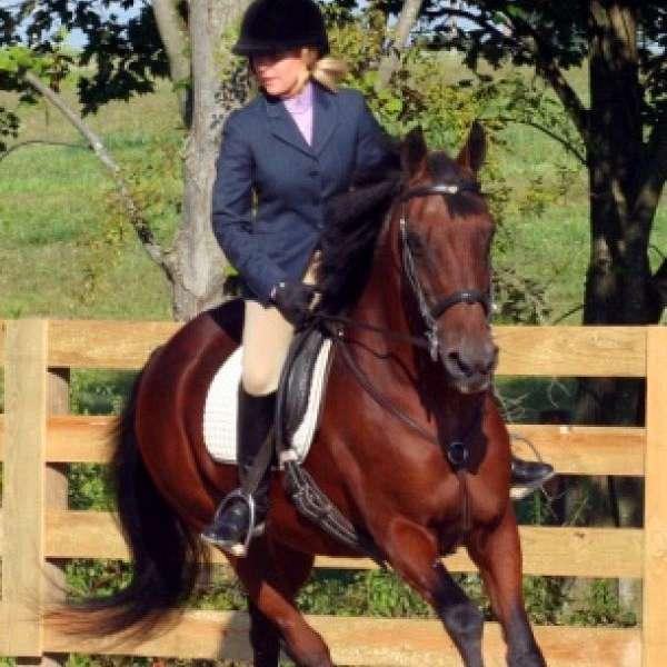 FCS Equestrian Center