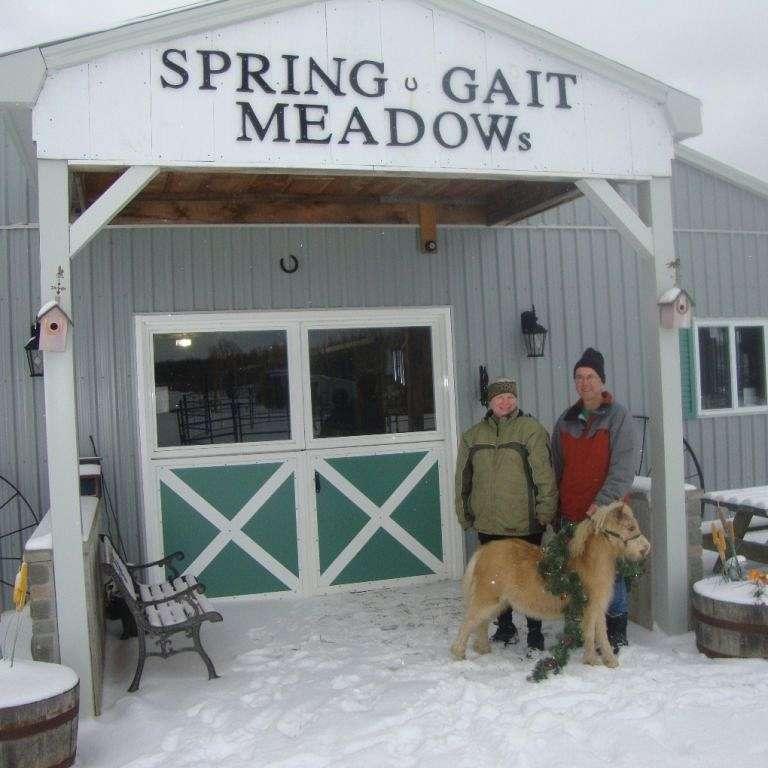 Spring Gait Meadows