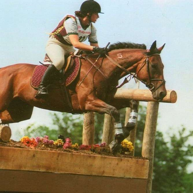Ruth Swanson Equine