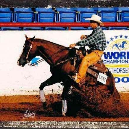 Quintana Performance Horses