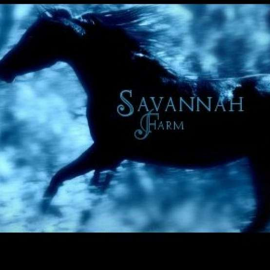 Savannah Farm