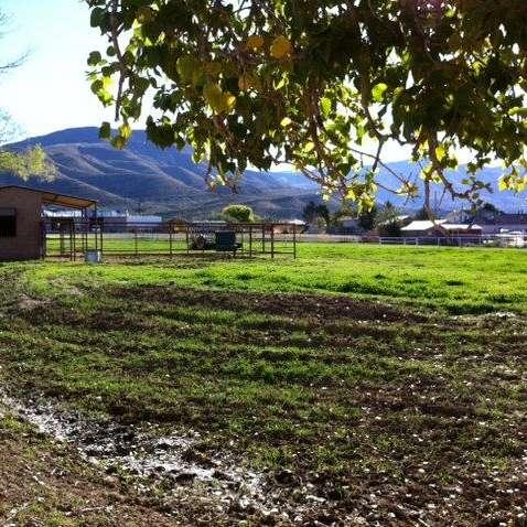 High Sierra Horse Farm
