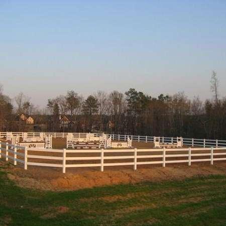 Green Tree Horse Farm