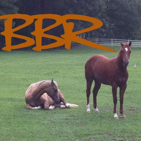BBR Equestrian Center - Broken Bone Ranch LLC