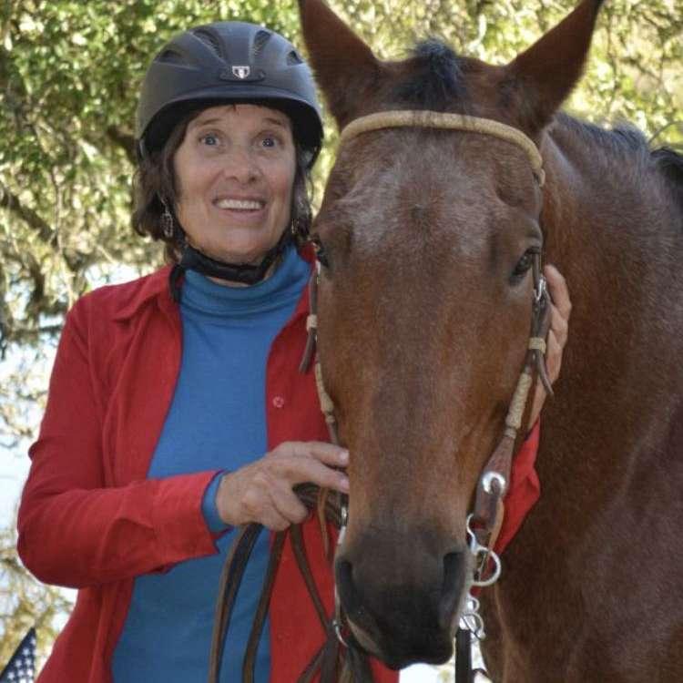 Blue Heaven Equestrian Training