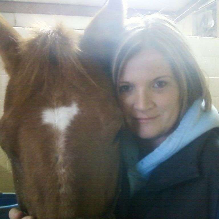 Rockin Redneck Horses