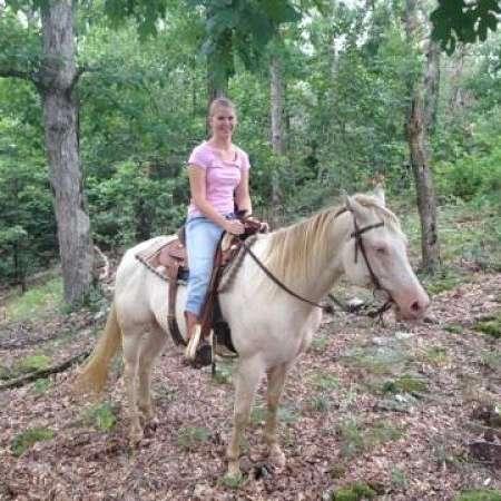 Hire Hain Horses