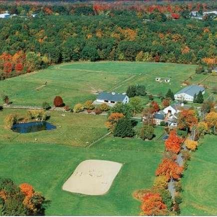 Whitney Lane Farms
