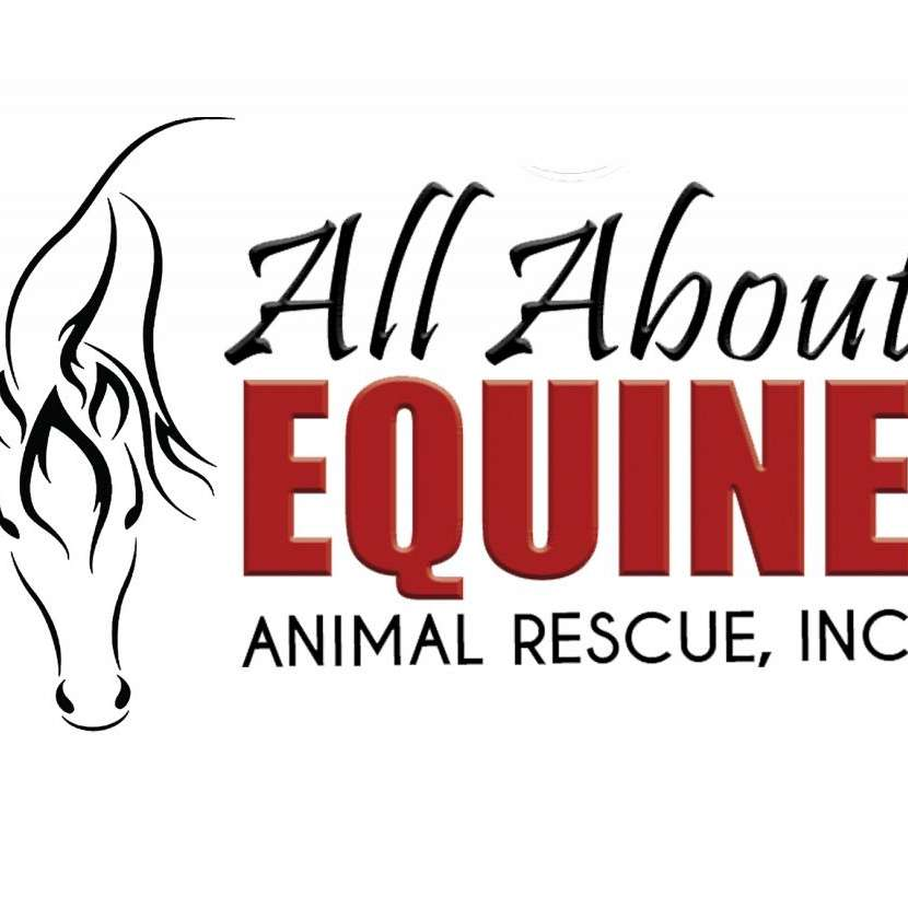 All About Equine Animal Rescue Inc.