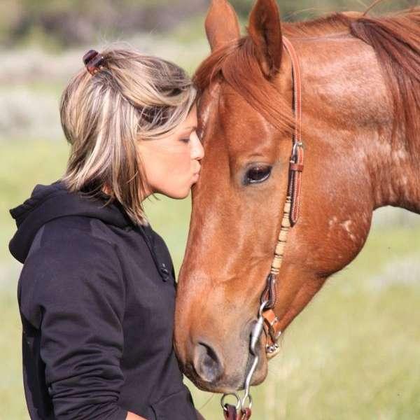 BEDAGO QUARTER HORSES