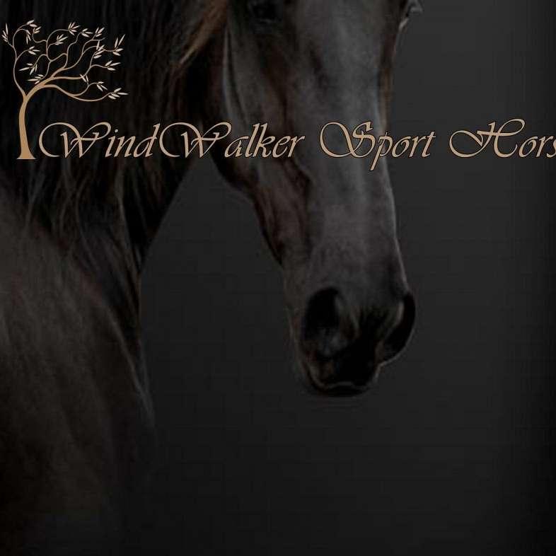 WindWalker Sport Horses
