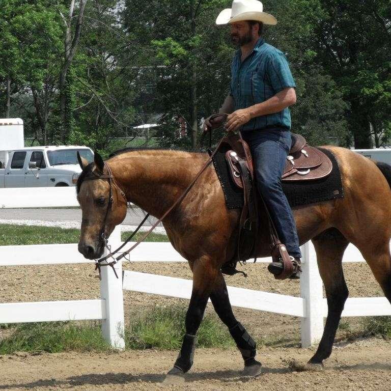 4 J Performance Horses