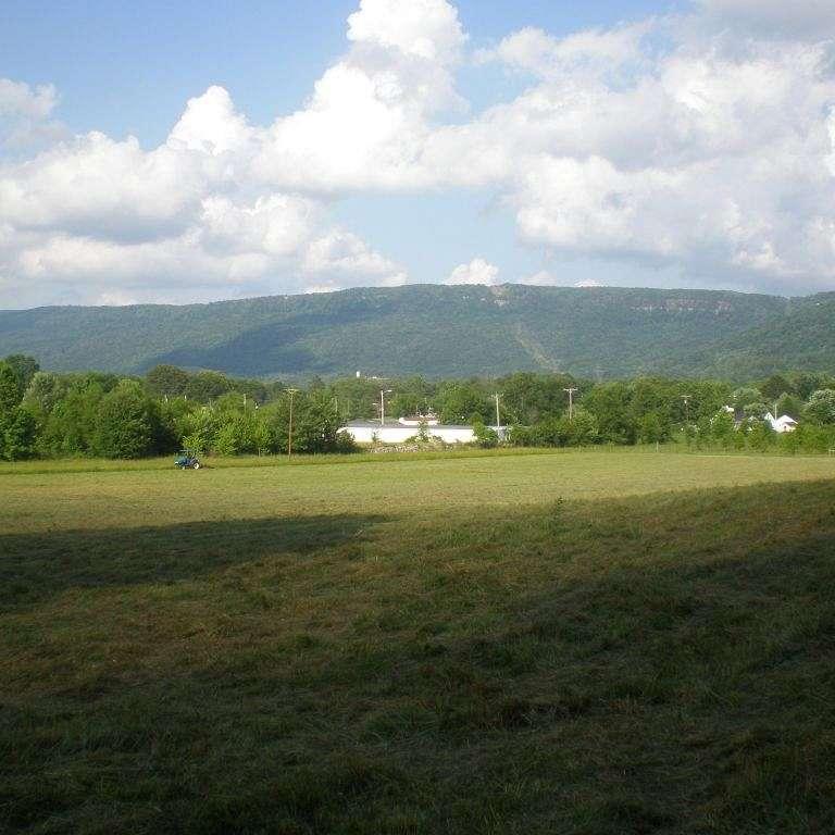White Acres Farm