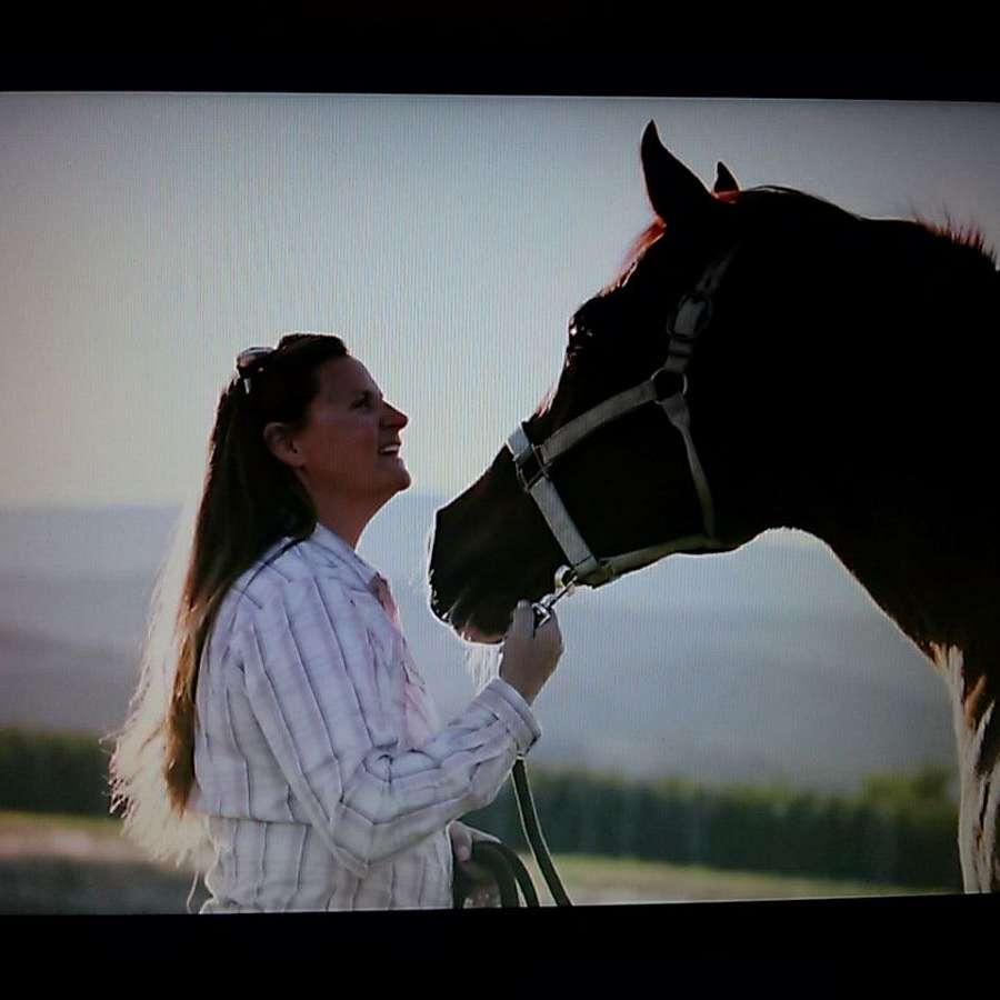 Darmarah Arabians