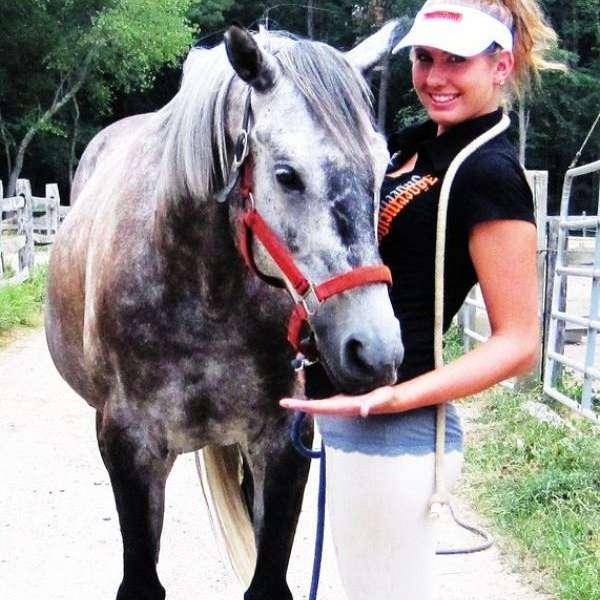 Tara K Equestrian