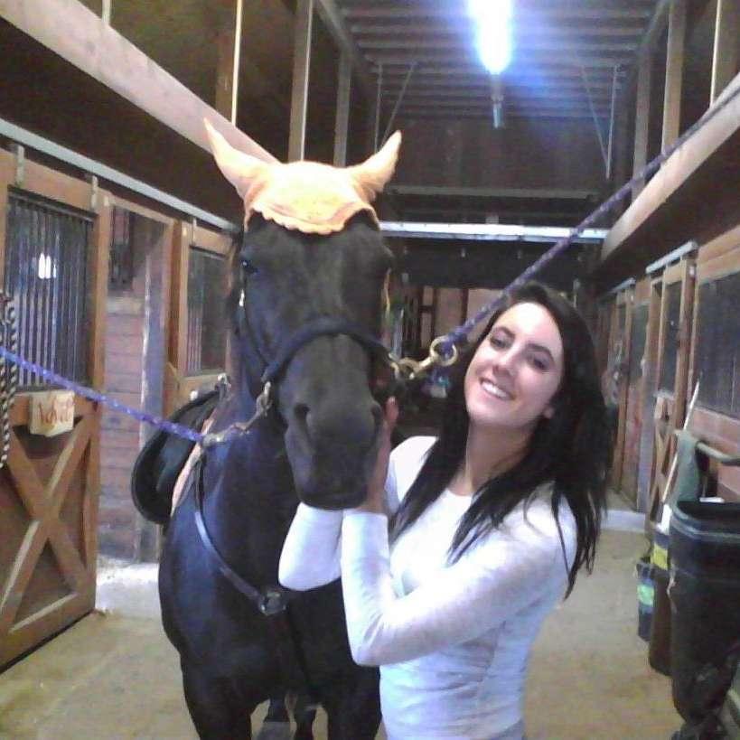C-Frizzle's Sport Horses