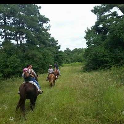 Tarkington Trails & Stables