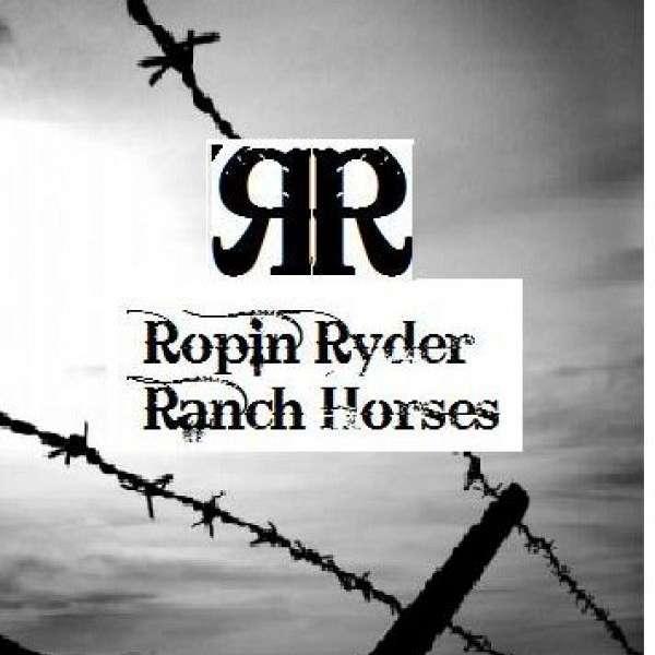 Ropin Ryder Ranch Horses