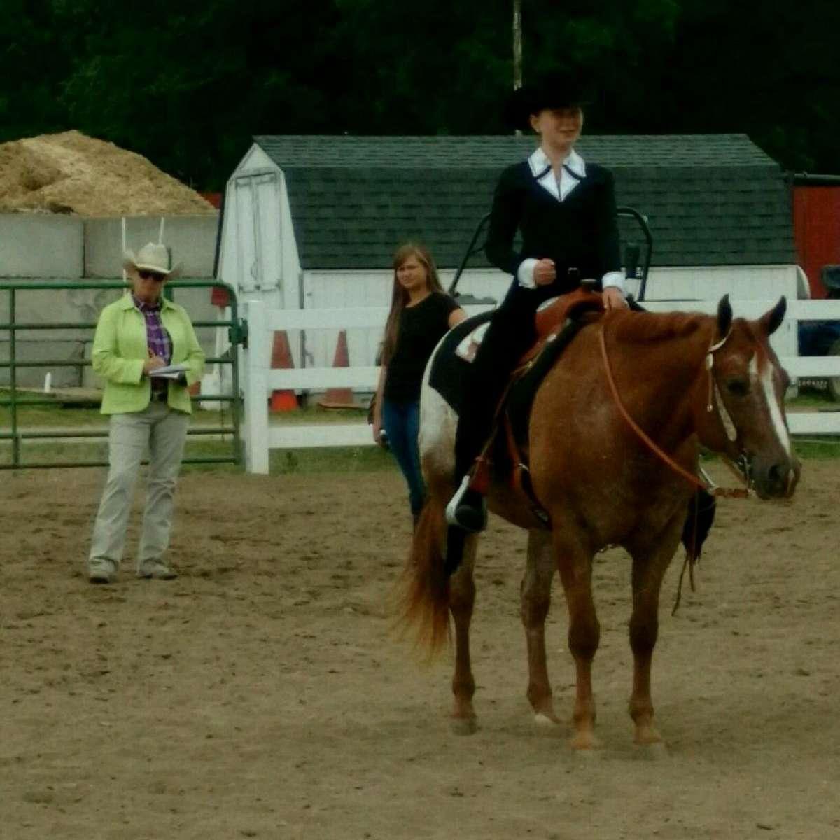 North River Ranch POA Pony Farm