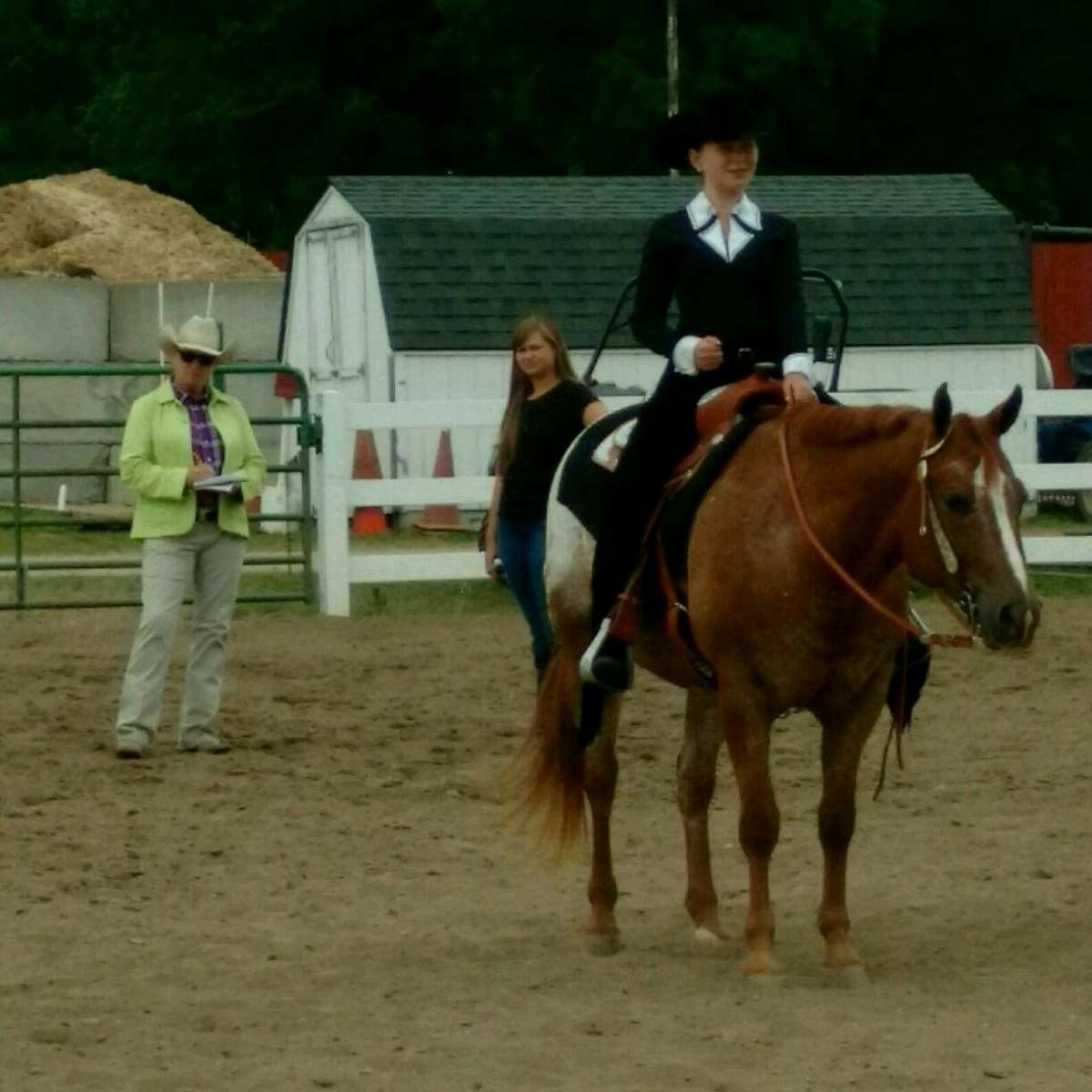 My POA Pony  North River Ranch