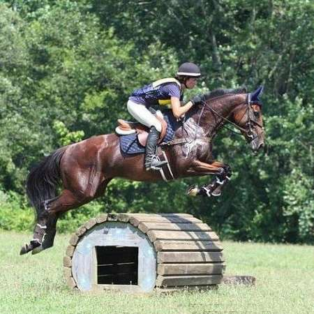 Classic Bay Eventing