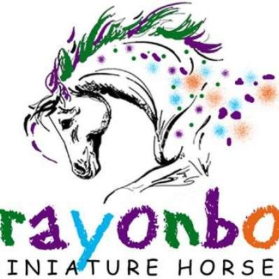 Crayonbox Miniature Horses