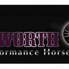 Erin Longworth Performance Horses