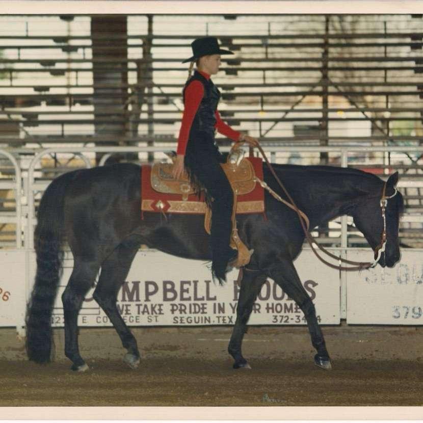 D.A.M. Strait Quarter Horses