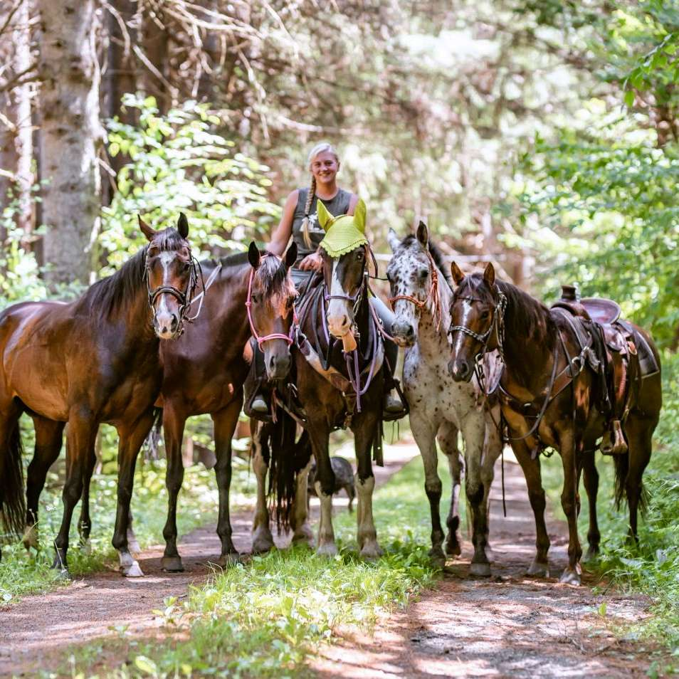 RR Horse Farm