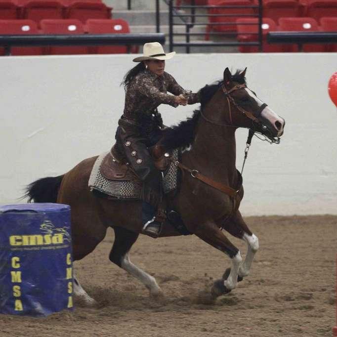 www.ranchhorsenow.com
