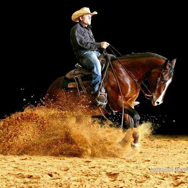Zacharias Horsemanship