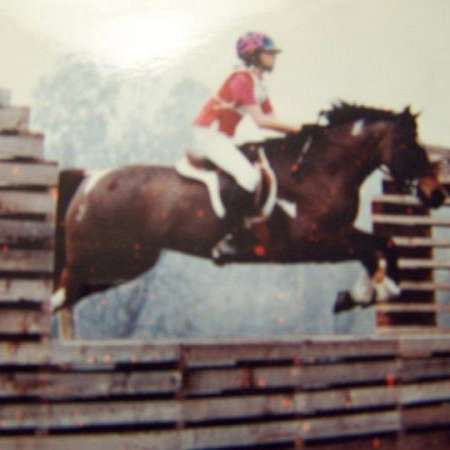Mills Ponies