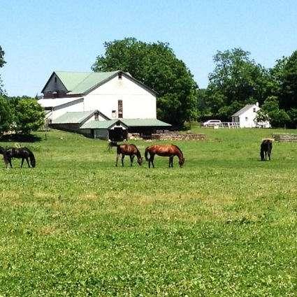Cedarwood Farms