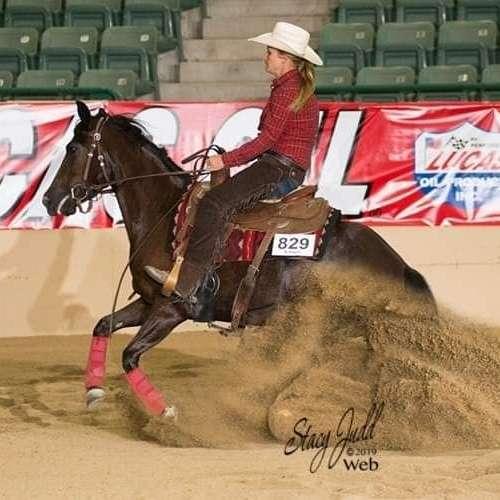 Simon Horsemanship