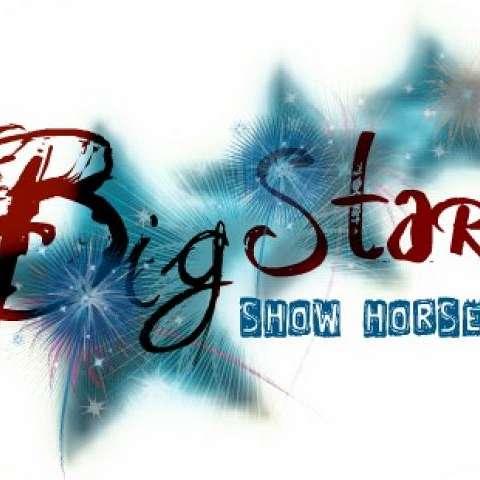Big Star Show Horses