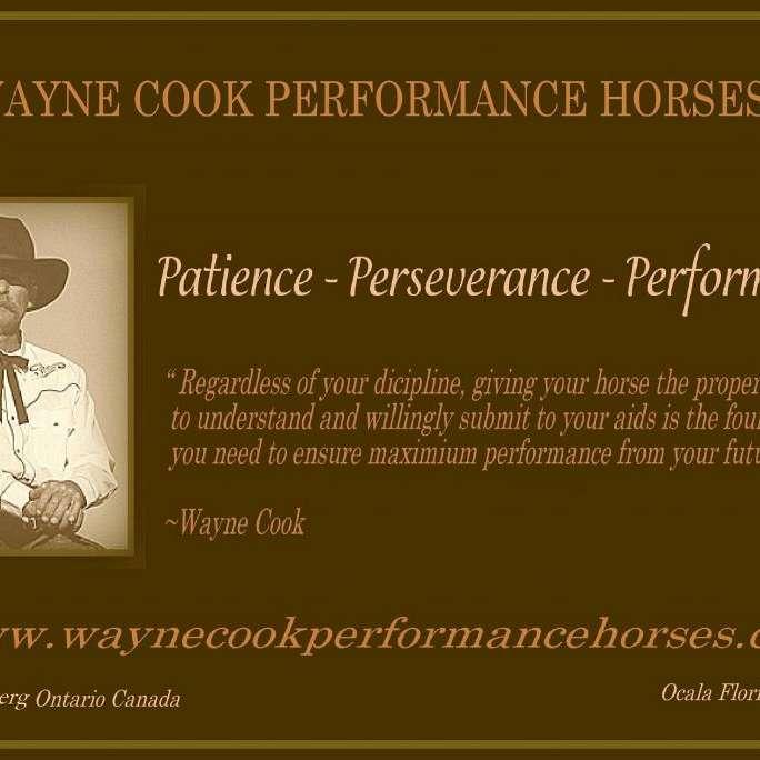 WAYNE COOK PERFORMANCE HORSES