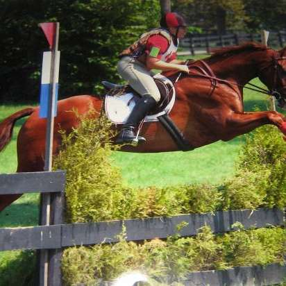 Northeast Ohio Riding Lessons and Training