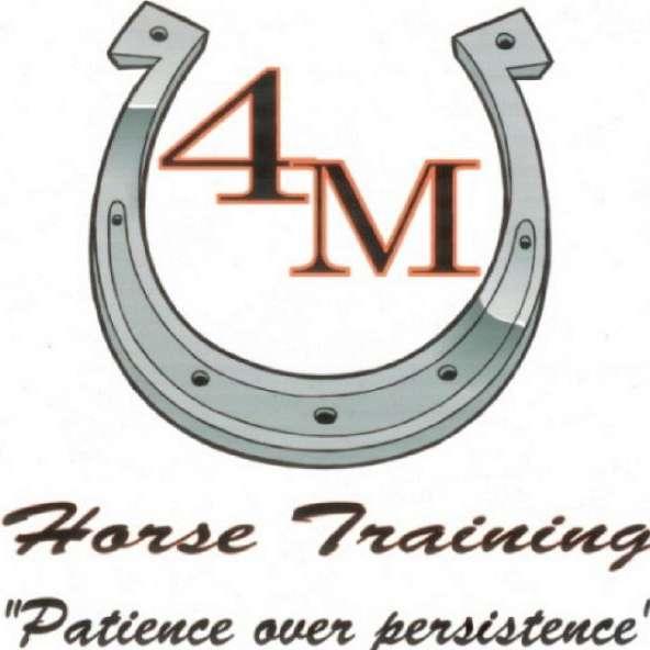 4M Horse Training