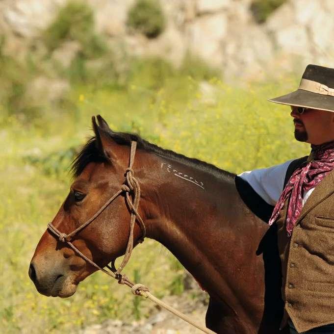 Brent Rollins Horsemanship