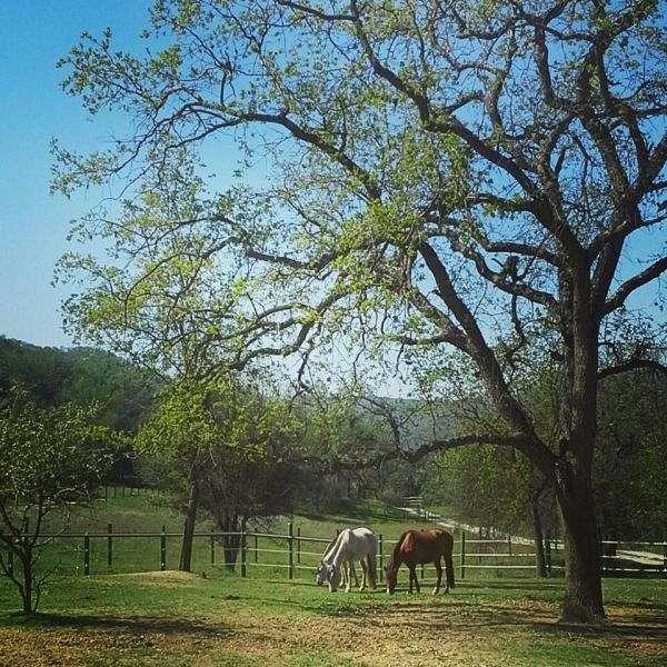Oak Rock Canyon Ranch