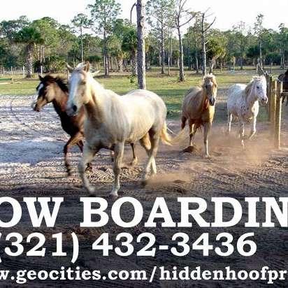 Hidden Hoof Prints Ranch