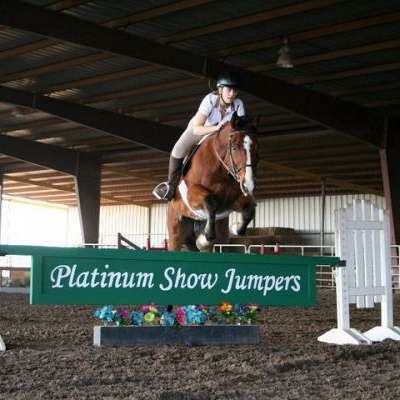 Platinum Show Jumpers