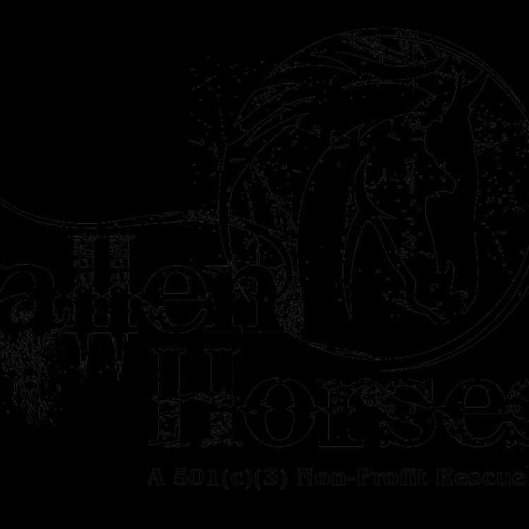 Fallen Horses Inc.