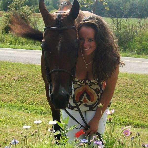 Charmed Arabians