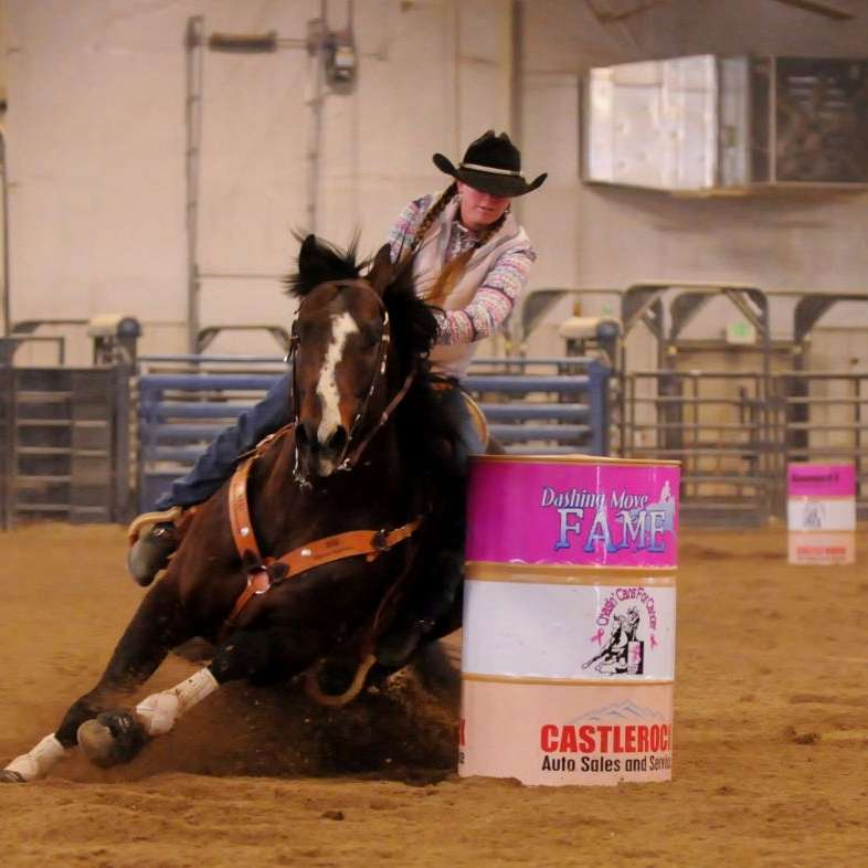 7 Lazy K Quarter Horses